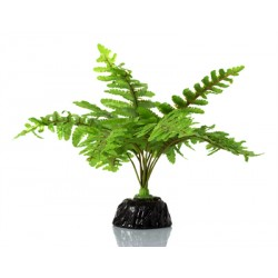 REPTIZOO Boston Fern
