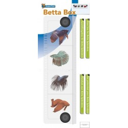 Betta Box isoloir pour Betta - 4 compartiments