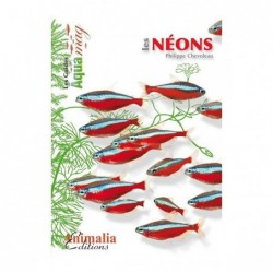 Animalia Editions Les néons - 64 pages