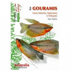 Animalia Editions Les gouramis - 64 pages